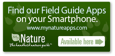 Field Guide Apps button